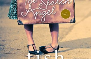The Search Angel Tish Cohen