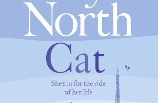 Cat cover, Freya North