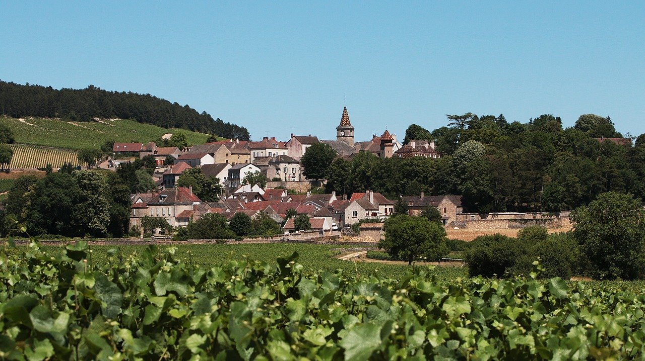 Review: The Road to Burgundy