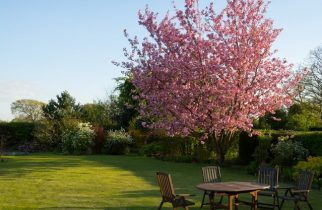 How to care for wooden garden furniture