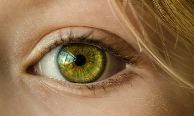 Future-Proof Your Vision in 3 Steps