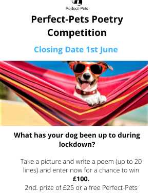 Win £100 in Perfect-Pets Lockdown Poetry Competition!