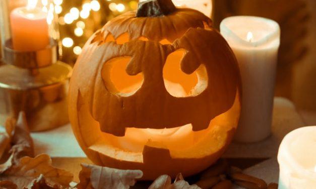 Halloween: Free Pumpkin Templates